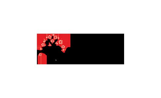Лого Disutura.com